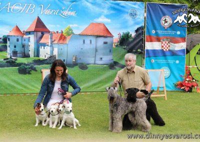 jacks-kerries-2-varazdin-2019k