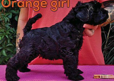 orange-girl5wk